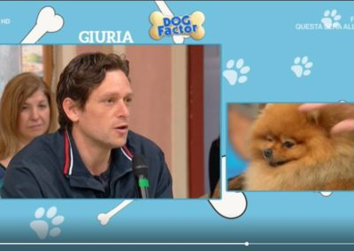 Tommaso in giuria a Dog Factor